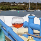 Second Cornwall Gin Cruise Released