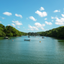 A Guide to Helford, the dog-friendly haven on Cornwall's South Coast